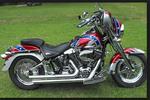 Thumbnail 2000-2005 Harley Davidson Softail Service Repair Manual Instant Download