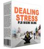 Thumbnail Dealing Stress Niche Website