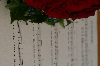 Thumbnail Musik_uBlumen_7033.JPG